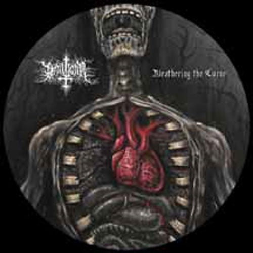 Draugar - Weathering the Curse (Picture Disc LP)