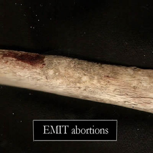 Emit - Abortions (CD)