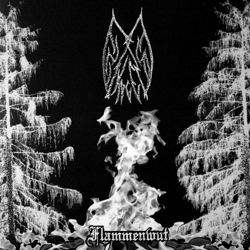 Ensom Skogen / Forgotten Spell / Moonblood - Flammenwut / Aesthetics of the Necromantic Manifestation / The Unholy (CD)