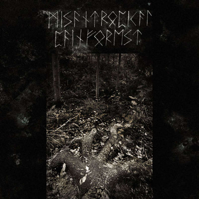 Misantropical Painforest - Firm Grip of the Roots (CD)