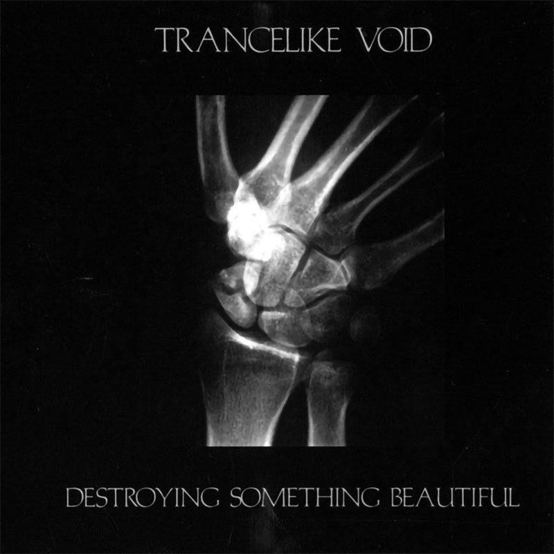 Trancelike Void - Destroying Something Beautiful (CD)