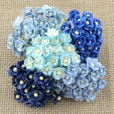 Pre Order Wild Orchid Miniature Mixed Sweetheart Blossom Flowers - 7 Kids Your Crafting Supply Store