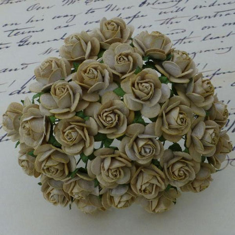 Wild Orchid Crafts - Mulberry Paper Open Roses (20mm), Light Mocha