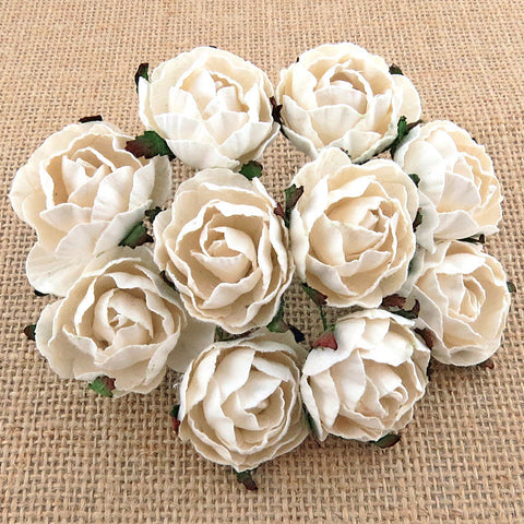Pre Order Wild Orchid White English Roses - 7 Kids Your Crafting Supply Store