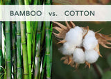 Is Bamboo A Healthy Alternative to Cotton?