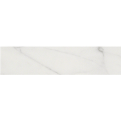 Shaw Tile Maximus Carrara Surface Bullnose