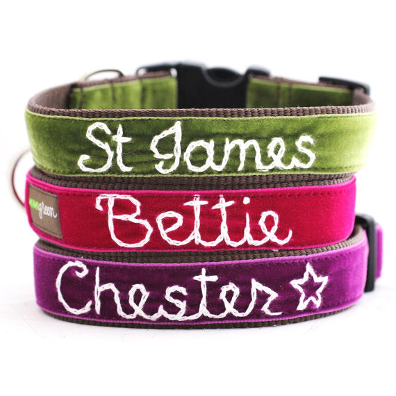 Personalized Velvet Dog Collar by shopmimigreen