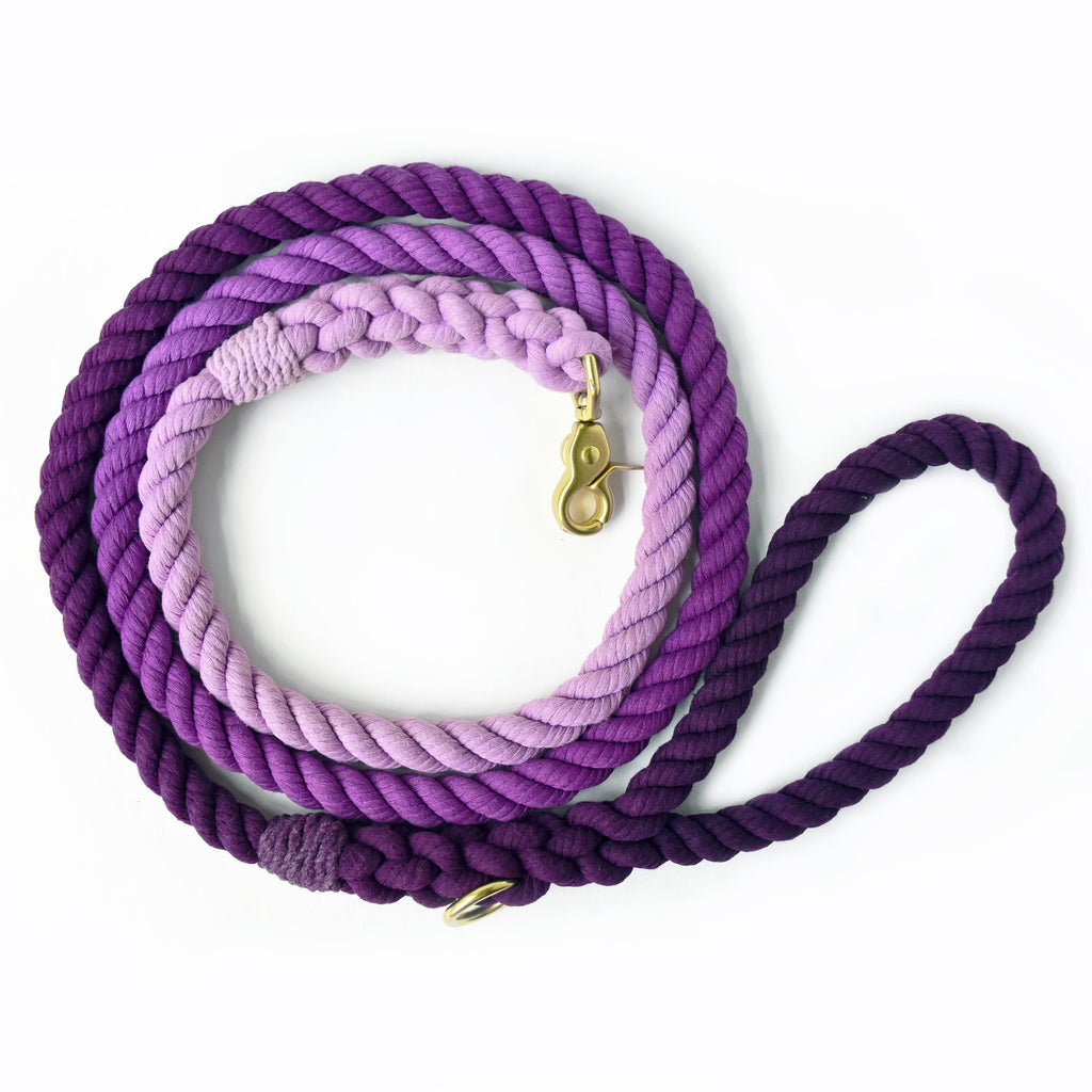 Moondog Design Studio Purple Ombré Dog Leash