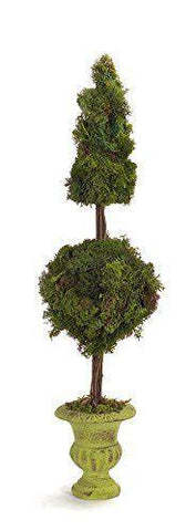 Potted Moss Cone/Ball Topiary