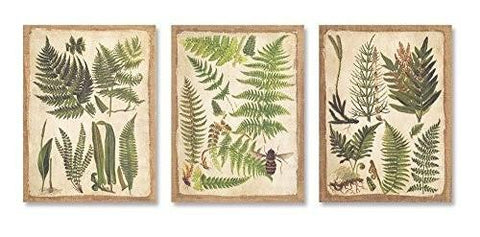 Fern Print Canvas