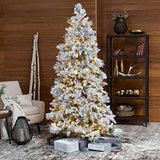 Lightly Flocked Snowbell Pine Pre-Lit Full Christmas Tree