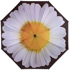 Soake Inside Out White Daisy