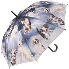 Soake Galleria Raining Cats  & Dogs Stick