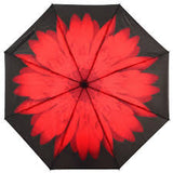 Soake Inside Out Red Daisy