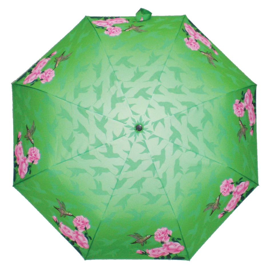 Simple Dream Summer Dance Hummingbird Umbrella