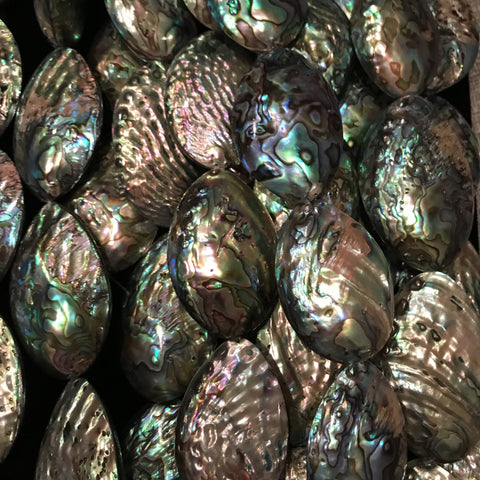 Gemstone - Abalone