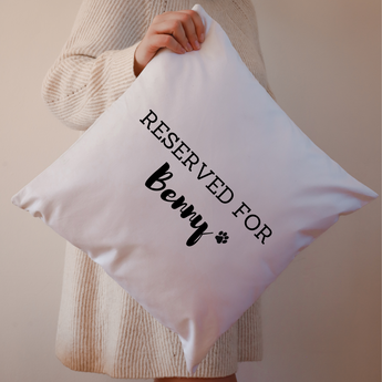 Reserved For Pet Cushion - White