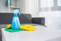 5-Hour Weekly HDB Ad-hoc and Spring Cleaning