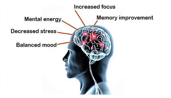 BRAINMEND infographic, balanced mood, decreased stress, mental energy, increased focus, memory improvement