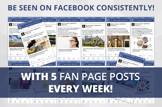 Facebook Active-5 Maintenance Package. One (1) Month of Dedicated Fan Page Maintenance Service. 5 Posts per Week.