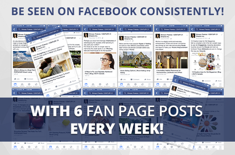 Facebook Active-6 Maintenance Package. One (1) Month of Dedicated Fan Page Maintenance Service. 6 Posts per Week.
