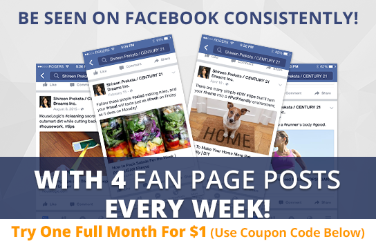 Facebook Active Maintenance Package. One (1) Month of Dedicated Fan Page Maintenance Service. 4 Posts per Week.