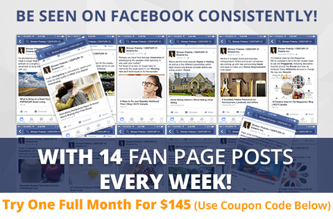Facebook Ninja Maintenance Package. One (1) Month of Dedicated Fan Page Maintenance Service. 14 Posts per Week + 1 on 1 Coaching.
