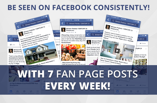 Facebook Pro-7 Maintenance Package. One (1) Month of Dedicated Fan Page Maintenance Service. 7 Posts per Week.
