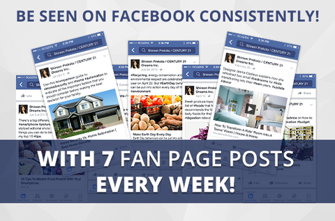 Facebook Pro-7+ Maintenance Package. One (1) Month of Dedicated Fan Page Maintenance Service. 7 Posts per Week.
