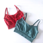 "Adore Bralette ""Popsicle"" Bundle"