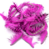 Black Barred Rabbit Strips - Hot Pink