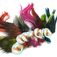 Coq De Leon UV2 Perdigon Fire Tail Feathers