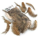 Hareline Grizzly Soft Hackle - Tan