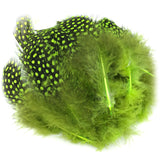 Hareline Strung Guinea Feathers - Chartreuse