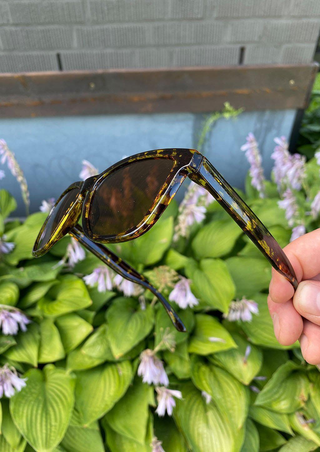 Our Mood V2 is an improved version of our last wayfarers. Plastic body for great quality and durabilty. This is Chic with tortoise frame and brown lenses. Out in the nature.