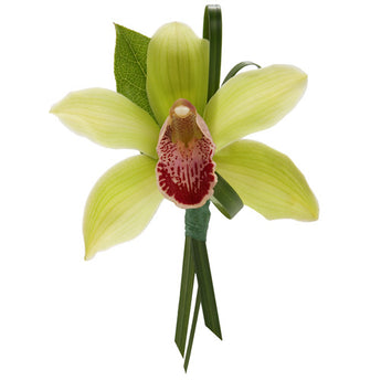 Cymbidium Orchid with Lily Grass