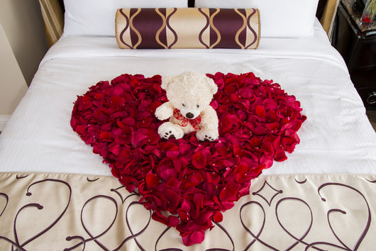 Red Rose Teddy Heart