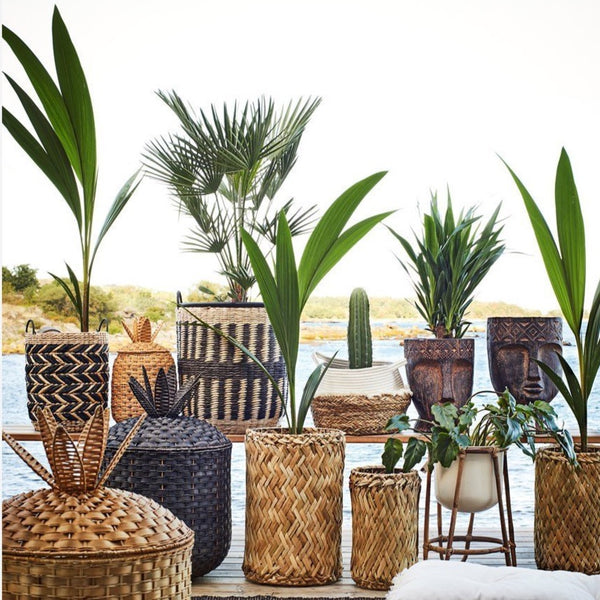Medium Rattan Pineapple Basket With Lid Black