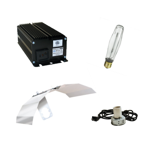 250 watt Lightspeed Digital ballast light kit