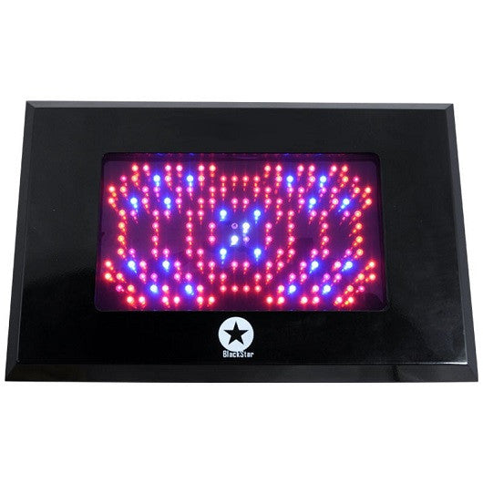 LED Blackstar 500W UV Vegetative