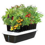 Versa Grow 10 Plant System with Pump