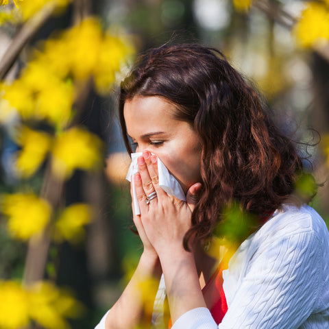 CBD and Seasonal Allergies