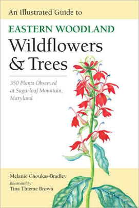 Book - An Illustrated Guide to Eastern Woodland Wildflowers & Trees