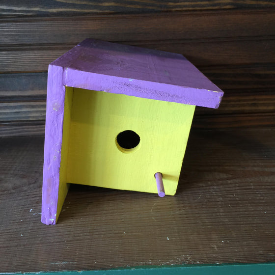 Funky Bird House