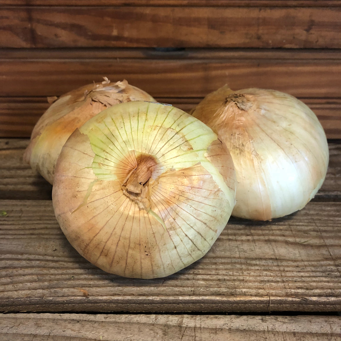 Produce - Sweet Onion - Frank's Produce