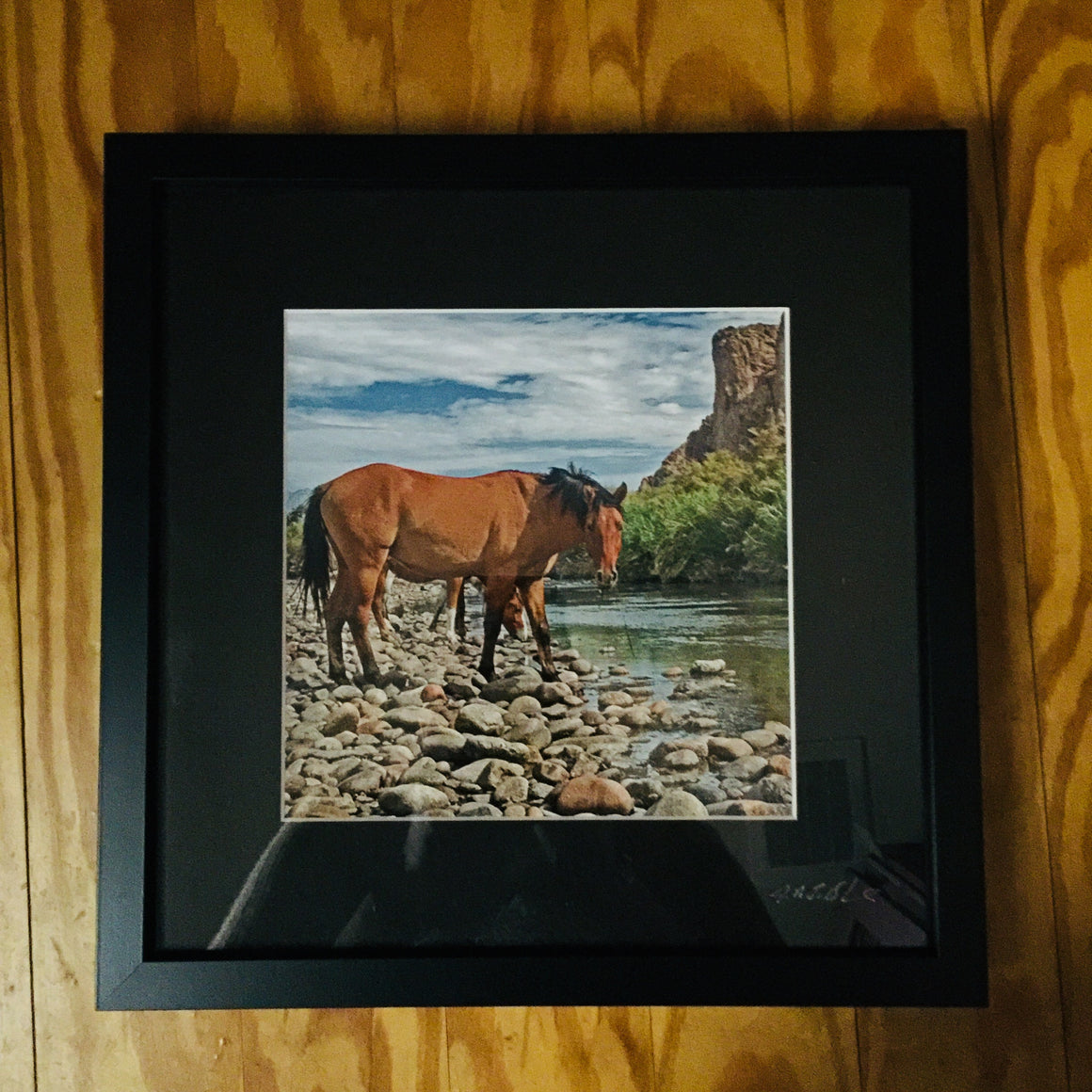 "Framed Photograph by James DeBuchananne - ""Horses by River"""