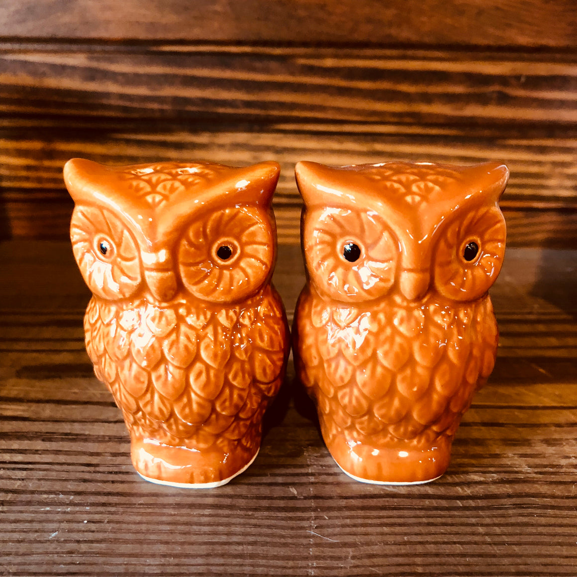 Salt & Pepper Shakers - Ceramic Owls