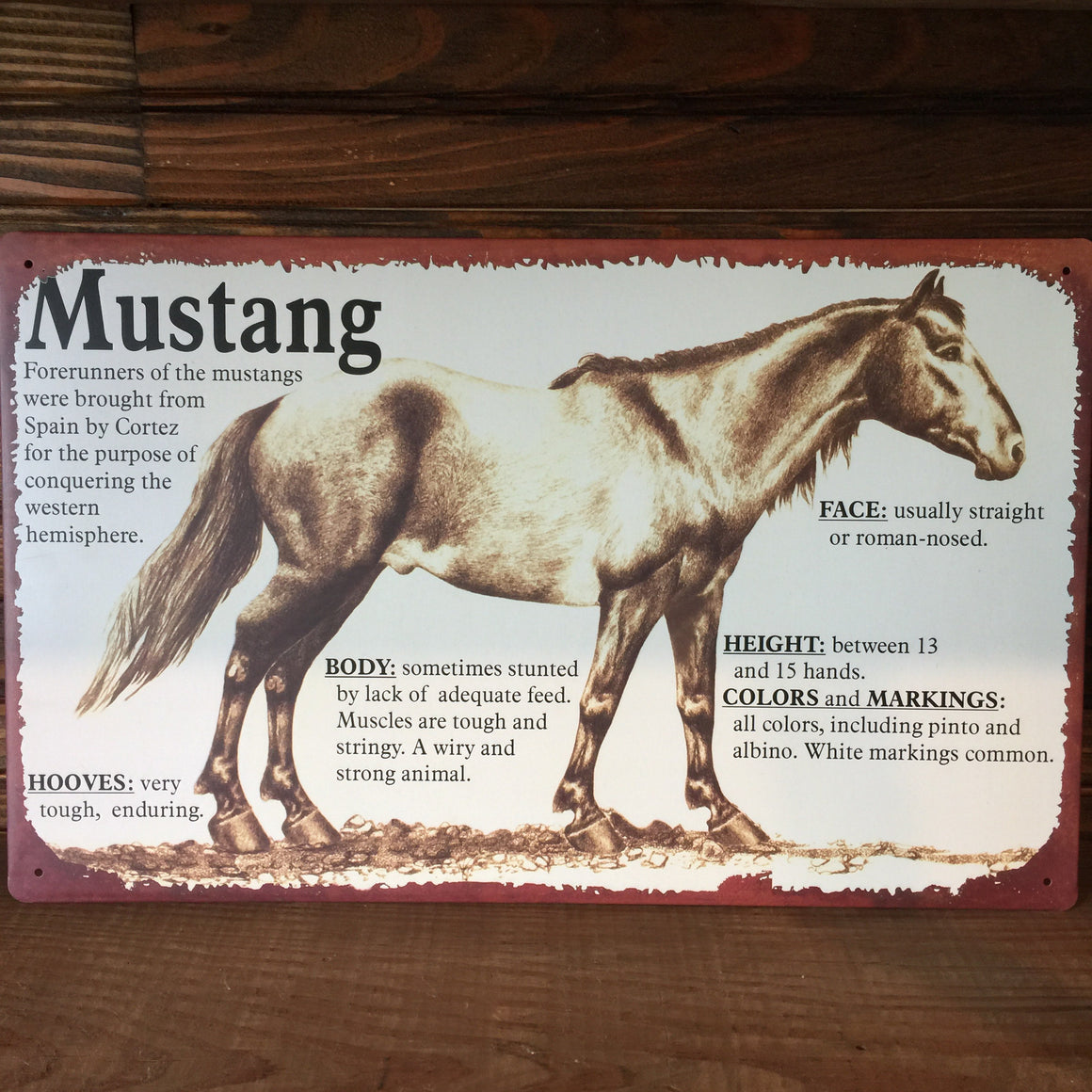 Tin Sign - Horse Lineage