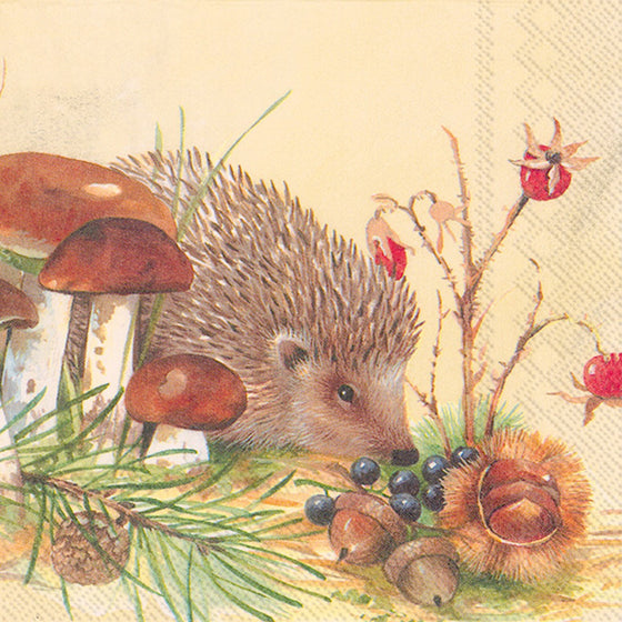 Lunch Napkin ~ Hedgehog