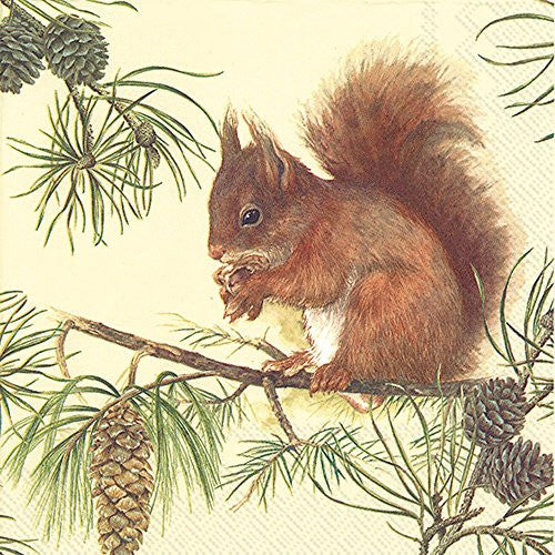 Lunch Napkin ~ Red Squirrel